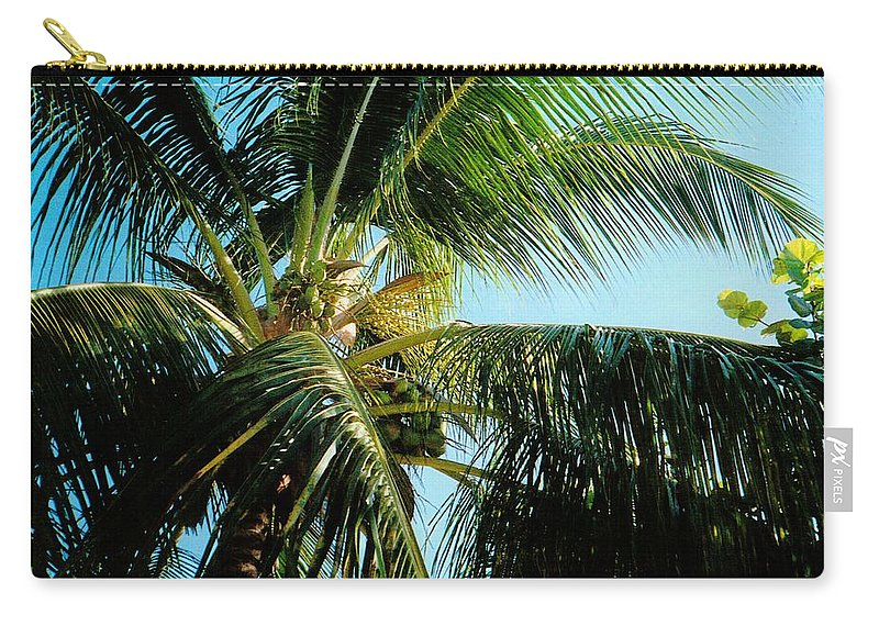 Jamaica Carry-all Pouch featuring the photograph Coconut Tree by Debbie Levene