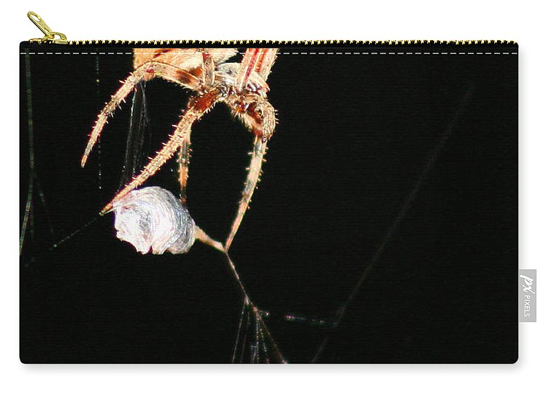 Spider Carry-all Pouch featuring the photograph Cocooning The Victim by Kristin Elmquist