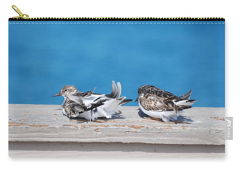 Bird Carry-all Pouch featuring the photograph Cold Birds by Rob Hans