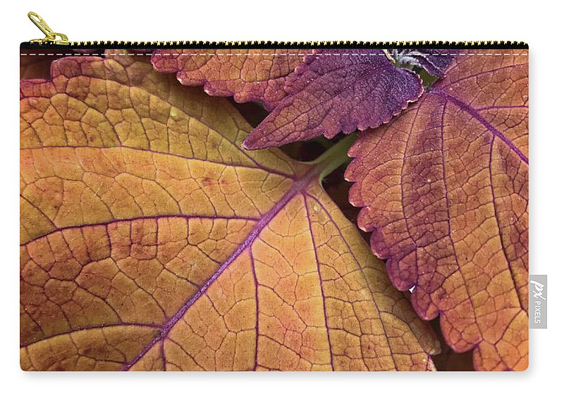 Coleus Carry-all Pouch featuring the photograph Coleus 2 by Jill Love