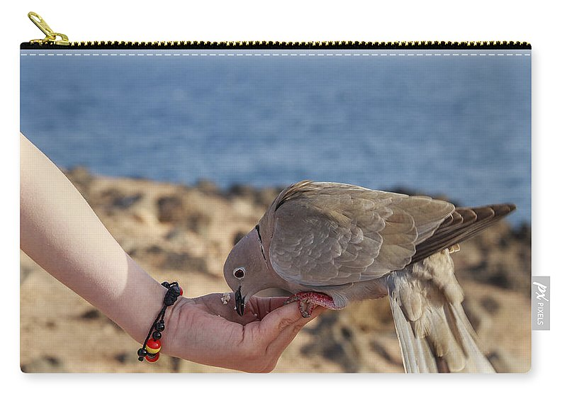 Action Carry-all Pouch featuring the photograph Collared Dove Feeding From A Hand by Chris Smith