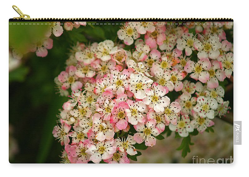 Fine Art Photography Carry-all Pouch featuring the photograph Colleen by Patricia Griffin Brett