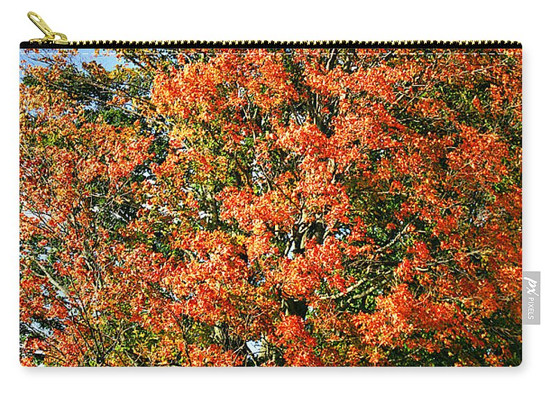 Fall Carry-all Pouch featuring the photograph Color 2009 by Deborah Benoit