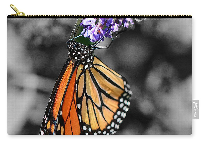 Butterfly Carry-all Pouch featuring the photograph Color My World by Cindy Manero