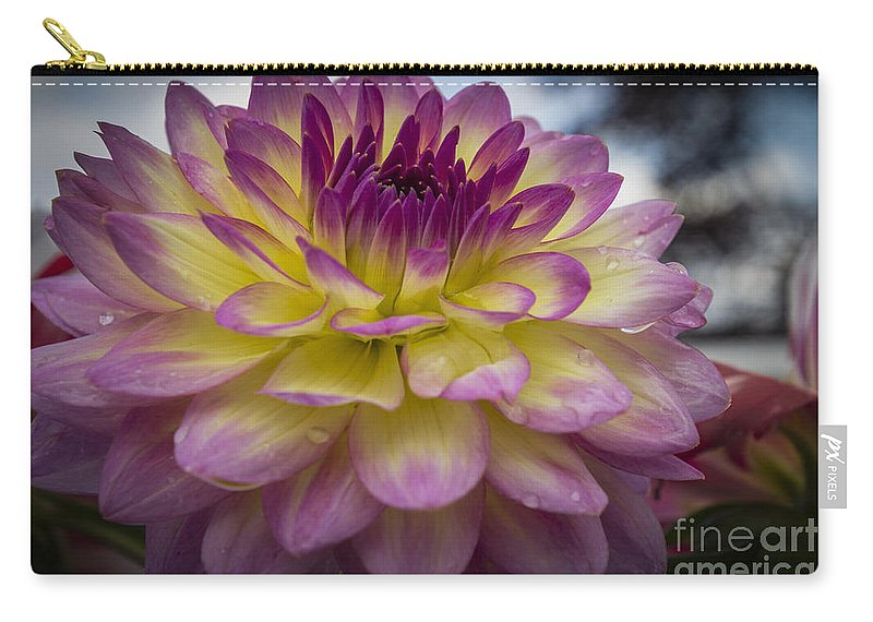 Flora Carry-all Pouch featuring the photograph Color Starburst by Joann Long