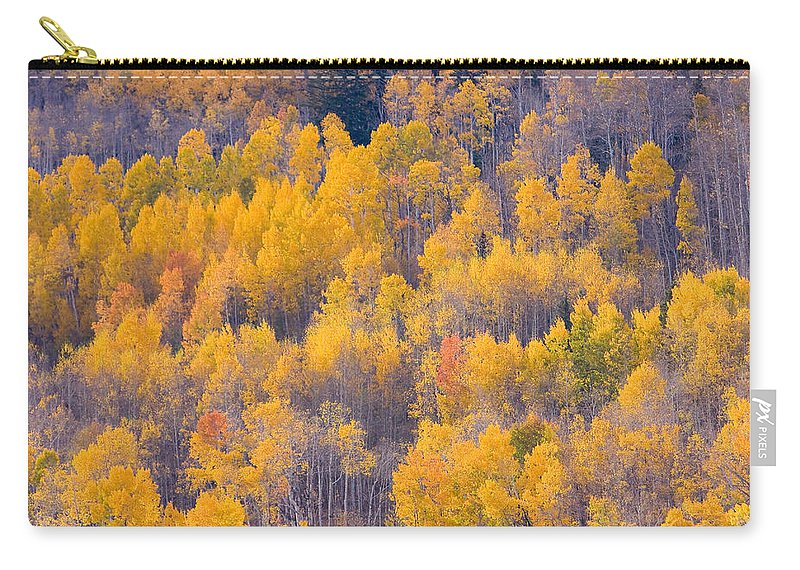 Trees Carry-all Pouch featuring the photograph Colorado Autumn Trees by James BO Insogna