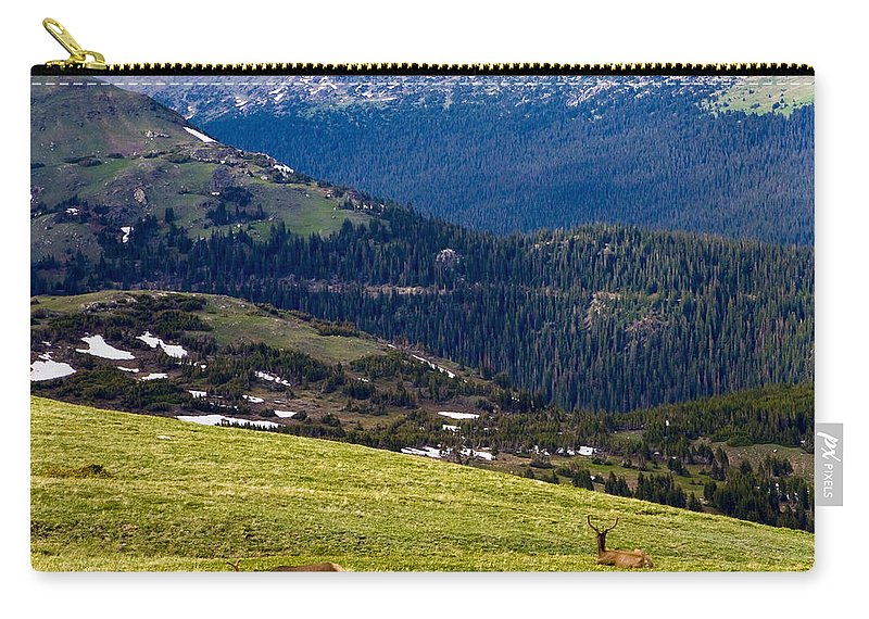 Americana Carry-all Pouch featuring the photograph Colorado Elk by Marilyn Hunt