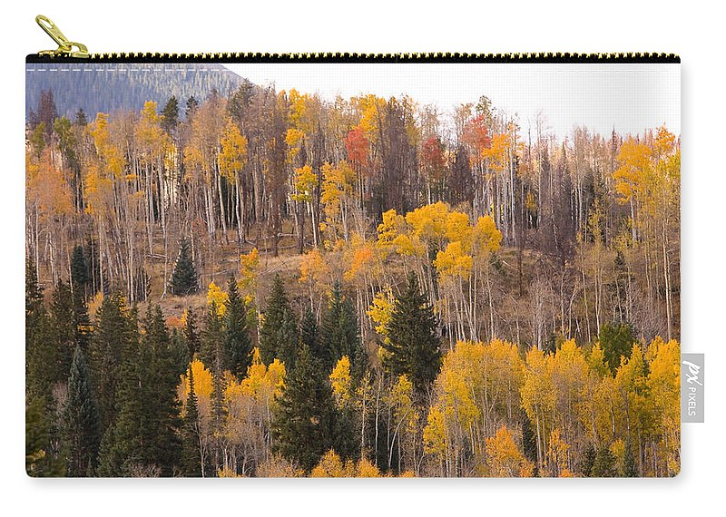 Trees Carry-all Pouch featuring the photograph Colorado Fall Foliage by James BO Insogna