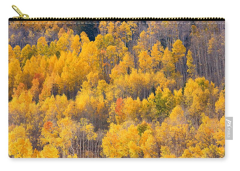 Trees Carry-all Pouch featuring the photograph Colorado High Country Autumn Colors by James BO Insogna