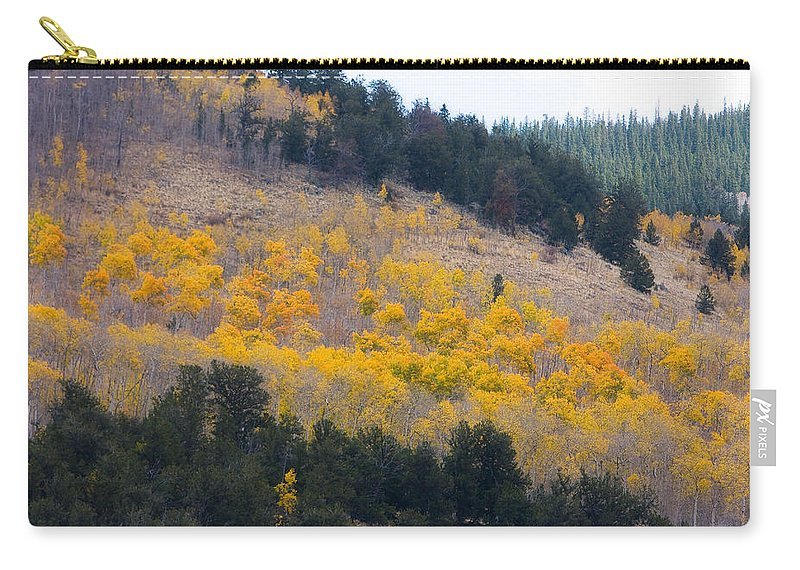 Trees Carry-all Pouch featuring the photograph Colorado Mountain Aspen Autumn View by James BO Insogna