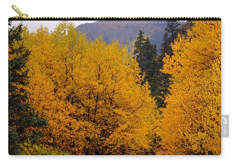 Fall Colors Carry-all Pouch featuring the photograph Colorado Road by Marty Koch