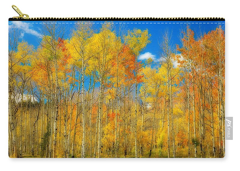 Aspens Carry-all Pouch featuring the photograph Colorful Colorado Fall Foliage by James BO Insogna