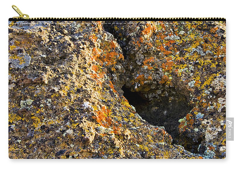 Lichen Carry-all Pouch featuring the photograph Colorful Lichens by Albert Seger
