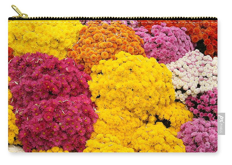 Flowers Carry-all Pouch featuring the photograph Colorful Mum Flowers Fine Art Abstract Photo by James BO Insogna