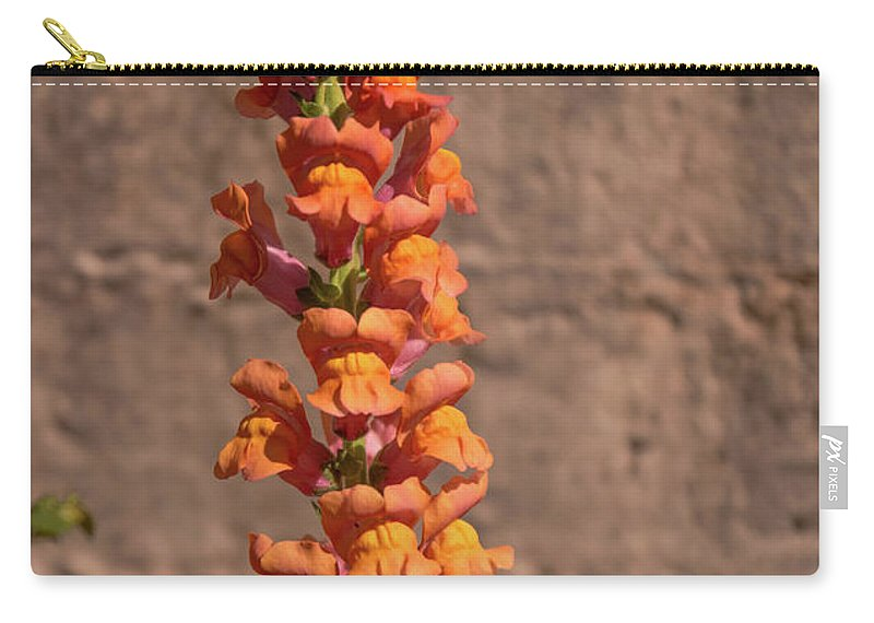 Snapdragon Carry-all Pouch featuring the photograph Colorful Snapdragons by Zina Stromberg