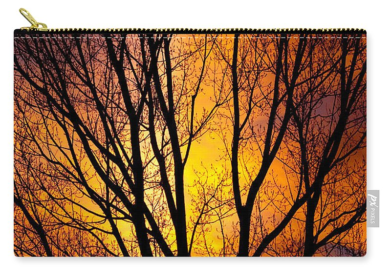 Vertical Carry-all Pouch featuring the photograph Colorful Tree Silhouettes by James BO Insogna
