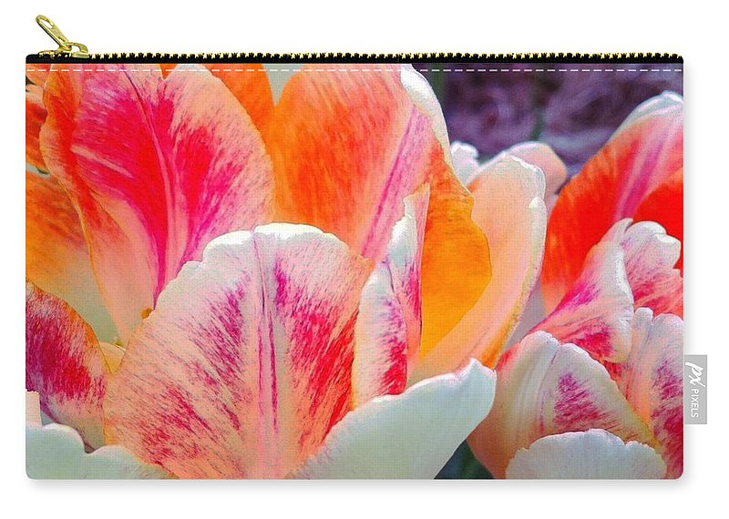 Colorful Tulips Carry-all Pouch featuring the photograph Colorful Tulips by Barbara Griffin