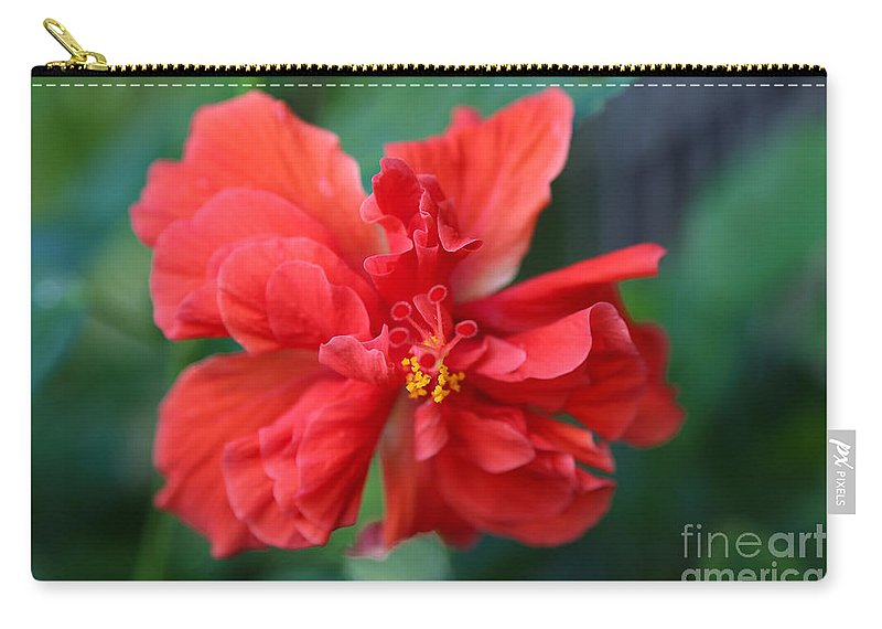 Hibiscus Carry-all Pouch featuring the photograph Colors Of The Tropics Hibiscus by Carol Groenen