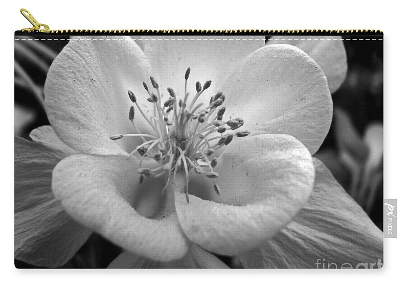 Flowers Carry-all Pouch featuring the photograph Columbine by Amanda Barcon