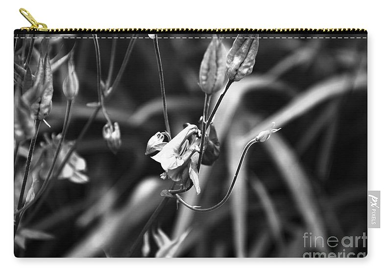 Columbine Flower Carry-all Pouch featuring the photograph Columbine Flower 2 Black And White by Marina McLain