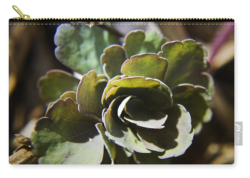 Aquilegia Carry-all Pouch featuring the photograph Columbine Foliage by Teresa Mucha
