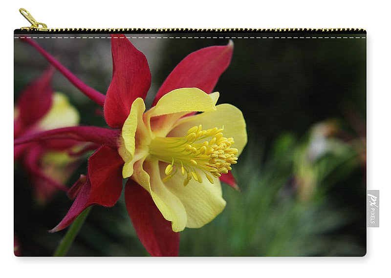 Columbine Carry-all Pouch featuring the photograph Columbine by Judy Vincent