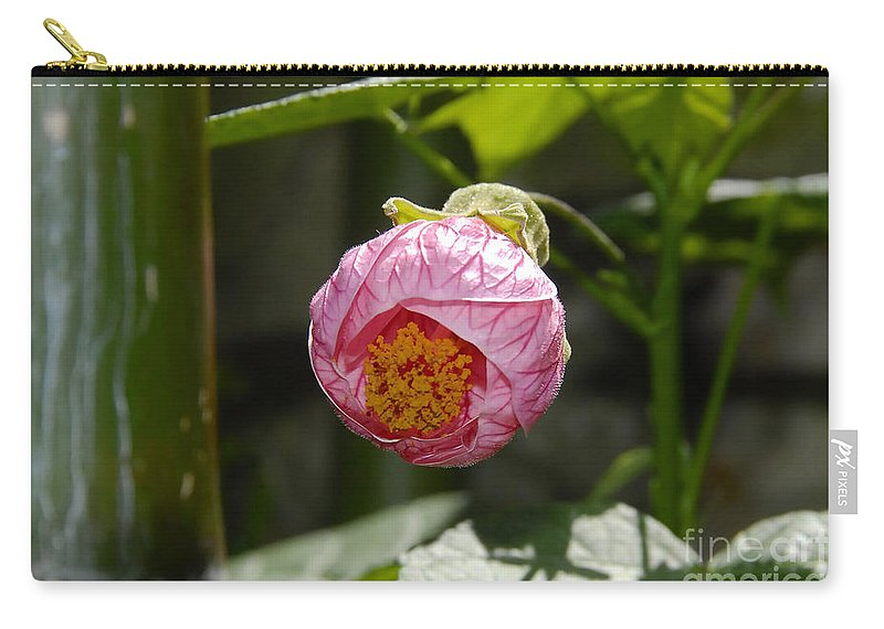 Flower Carry-all Pouch featuring the photograph Coming Out by David Lee Thompson