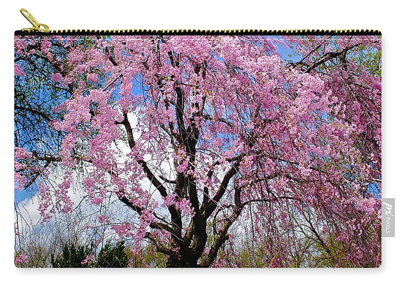Spring Carry-all Pouch featuring the photograph Coming To Life by Frozen in Time Fine Art Photography