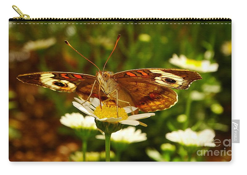 Common Carry-all Pouch featuring the photograph Common Buckeye by Brian Warnke