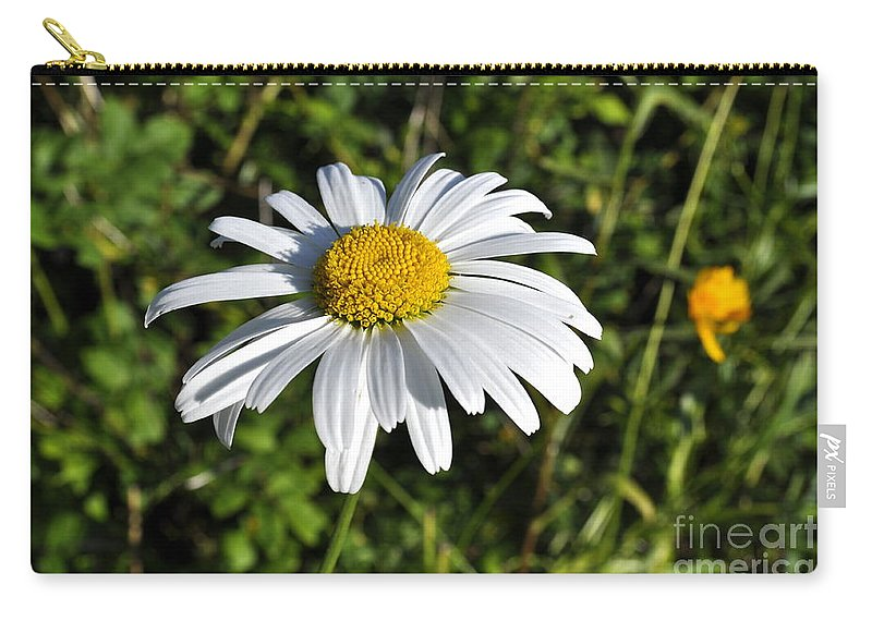 Daisy Carry-all Pouch featuring the photograph Common Daisy by Penny Neimiller