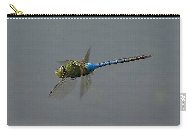 Dragonfly Carry-all Pouch featuring the photograph Common Darner All Of A Hover by Bob Kemp