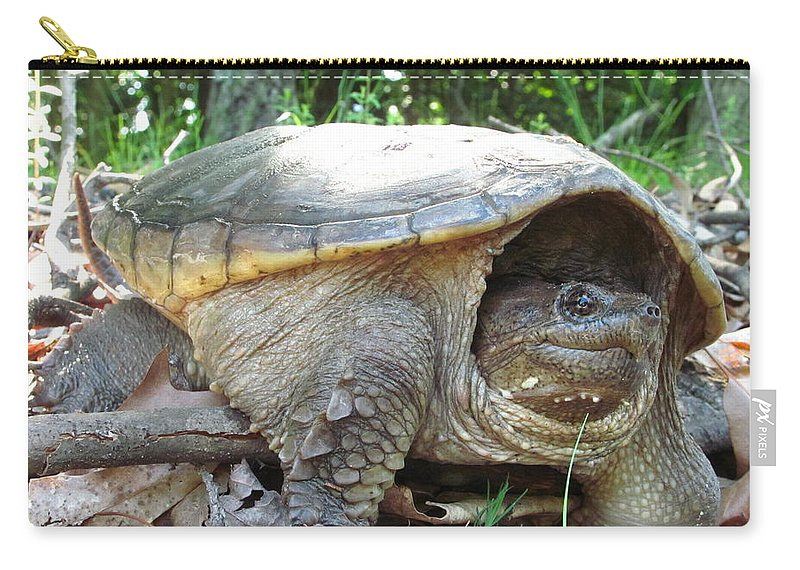 Common Snapping Turtle Images Common Snapping Turtle Photograph Prints Reptile Images Reptile Photograph Prints Nature Swamp Creature Wetland Ecosystem Biodiversity Freshwater Turtle Images Freshwater Predator Carry-all Pouch featuring the photograph Common Snapping Turtle by Joshua Bales