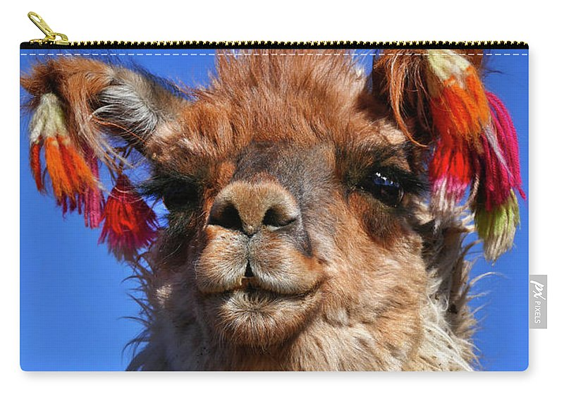 Como Se Llama Carry-all Pouch featuring the photograph Como Se Llama by Skip Hunt