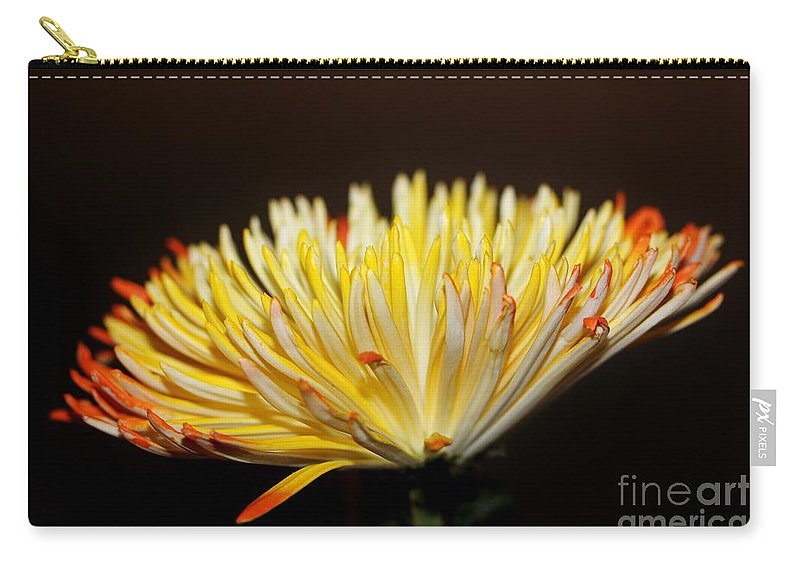 Flower Carry-all Pouch featuring the photograph Complexed by Mesa Teresita