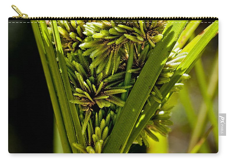Weeds Carry-all Pouch featuring the photograph Cone Of Green by Kelley King
