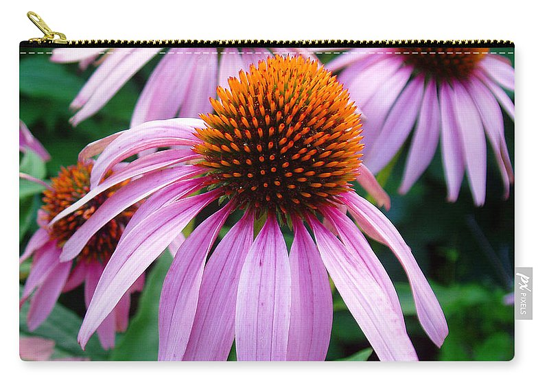 Coneflowers Carry-all Pouch featuring the photograph Three Coneflowers by Nancy Mueller