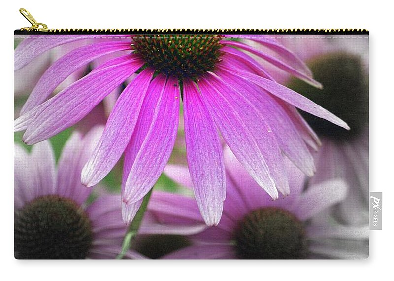 Flowers Carry-all Pouch featuring the photograph Coneflowers by Marty Koch
