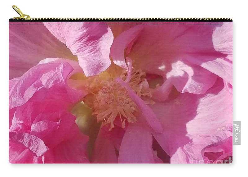 Confederate Rose Carry-all Pouch featuring the photograph Confederate Rose by Maria Urso