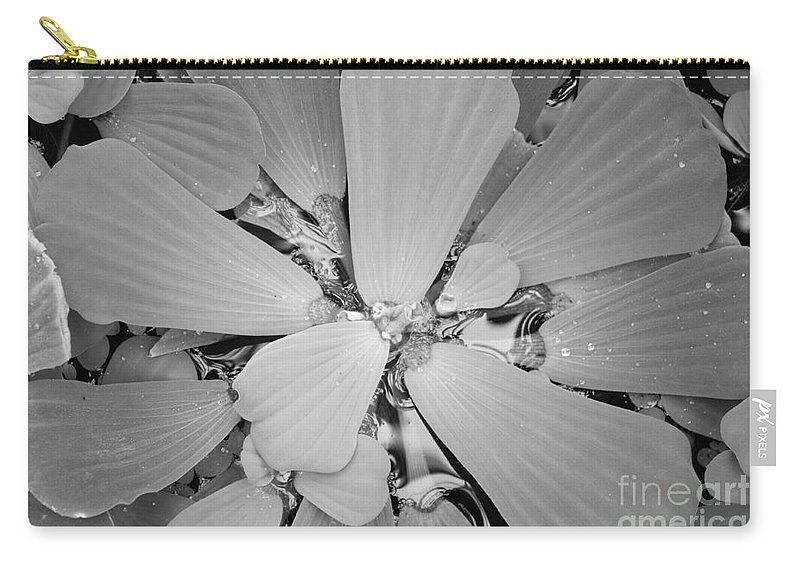 Nature Carry-all Pouch featuring the photograph Conservatory Nature In Black And White 1 by Carol Groenen