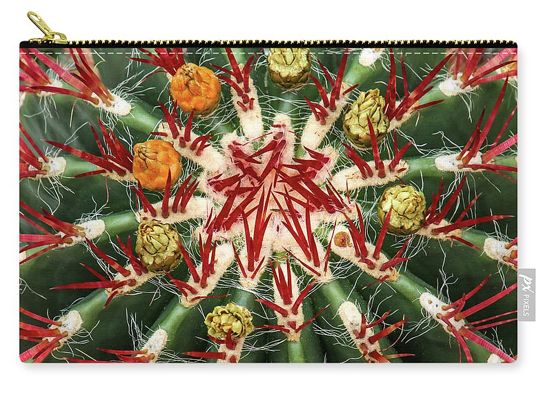 Cactus Carry-all Pouch featuring the photograph Constellation by Tom and Pat Cory