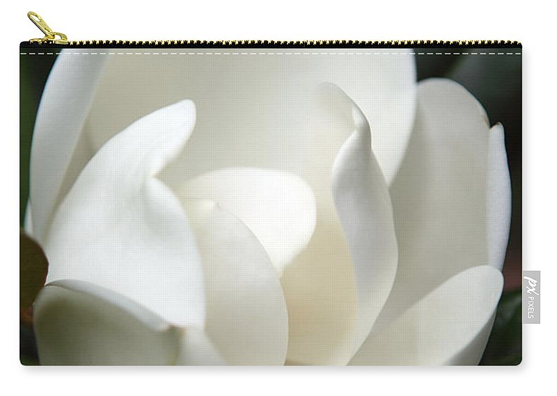 Magnolia Carry-all Pouch featuring the photograph Container by Amanda Barcon