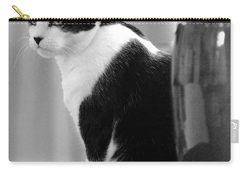 Black And White Carry-all Pouch featuring the photograph Contemplative Cat Black And White by Jill Reger