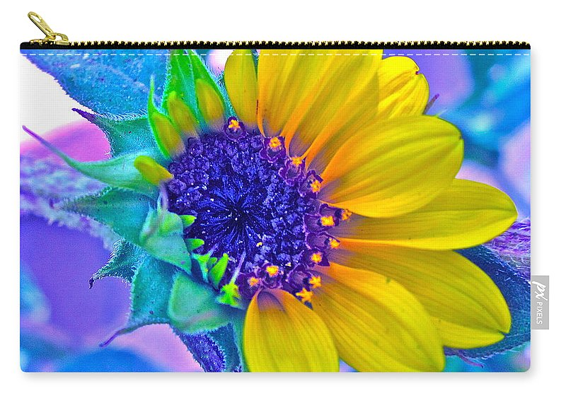 Photographs Carry-all Pouch featuring the photograph Content by Gwyn Newcombe