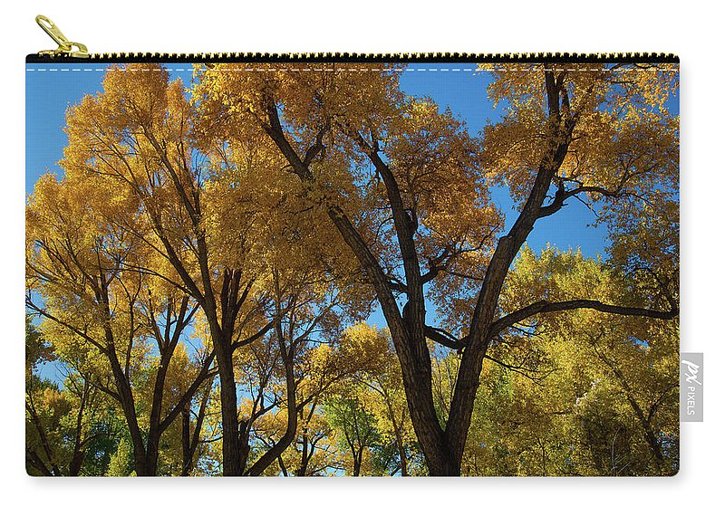 Cody Carry-all Pouch featuring the photograph Contrasts of Fall by Frank Madia