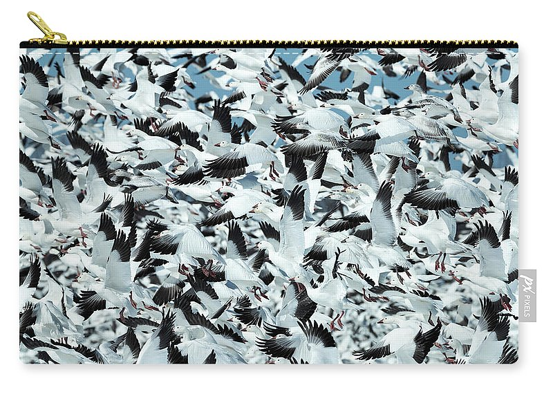 Snow Carry-all Pouch featuring the photograph Controlled Chaos by Everet Regal