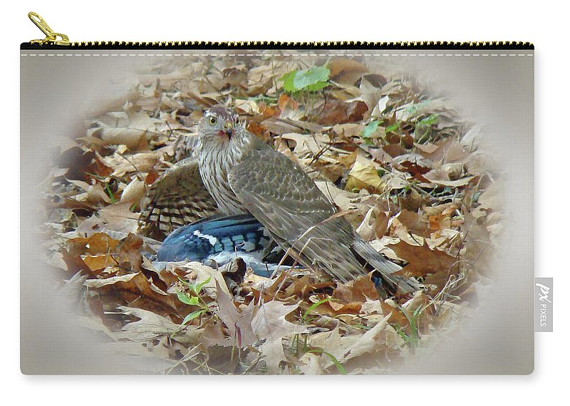 Hawk Carry-all Pouch featuring the photograph Cooper's Hawk - Accipiter Cooperii - With Blue Jay by Mother Nature