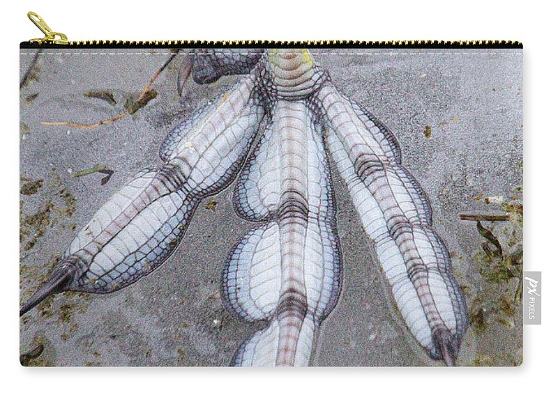 Coot Carry-all Pouch featuring the photograph Coot Foot by Bob Kemp
