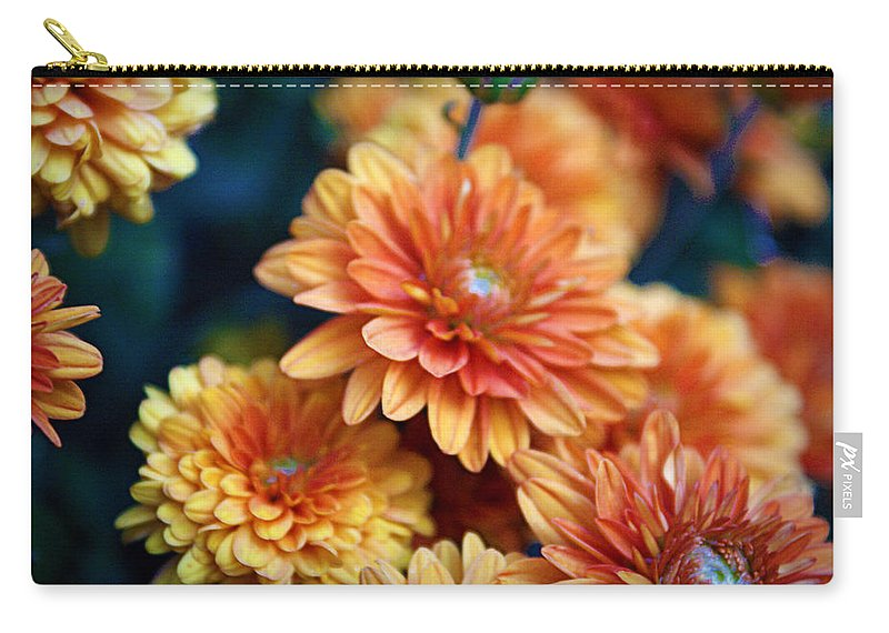 Flowers Carry-all Pouch featuring the photograph Copper Mums by Cricket Hackmann