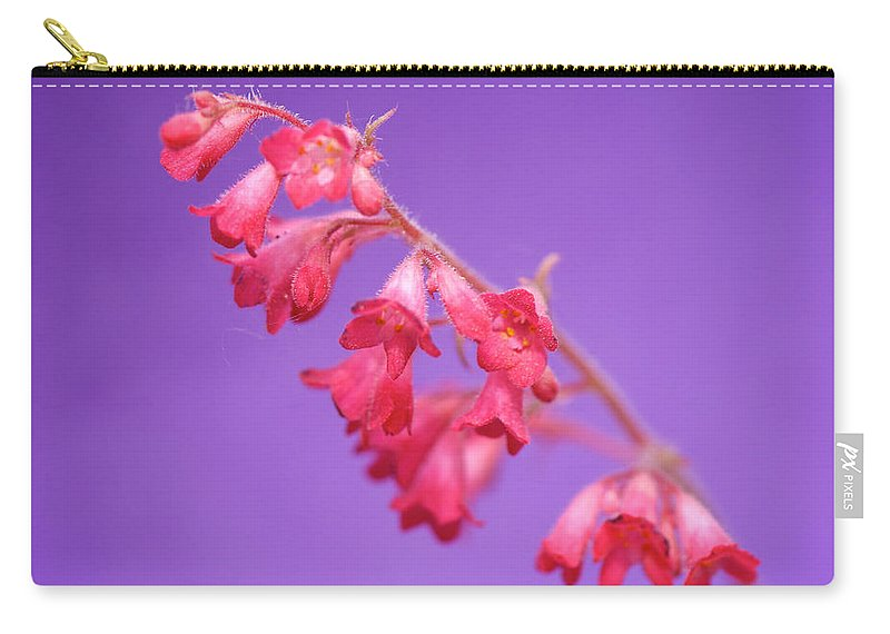 Interior Design Carry-all Pouch featuring the photograph Coral Bells by Lisa Knechtel