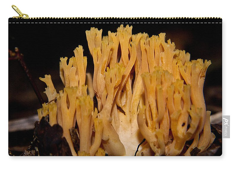 Fungi Carry-all Pouch featuring the photograph Coral Fungi In The Forest by Douglas Barnett